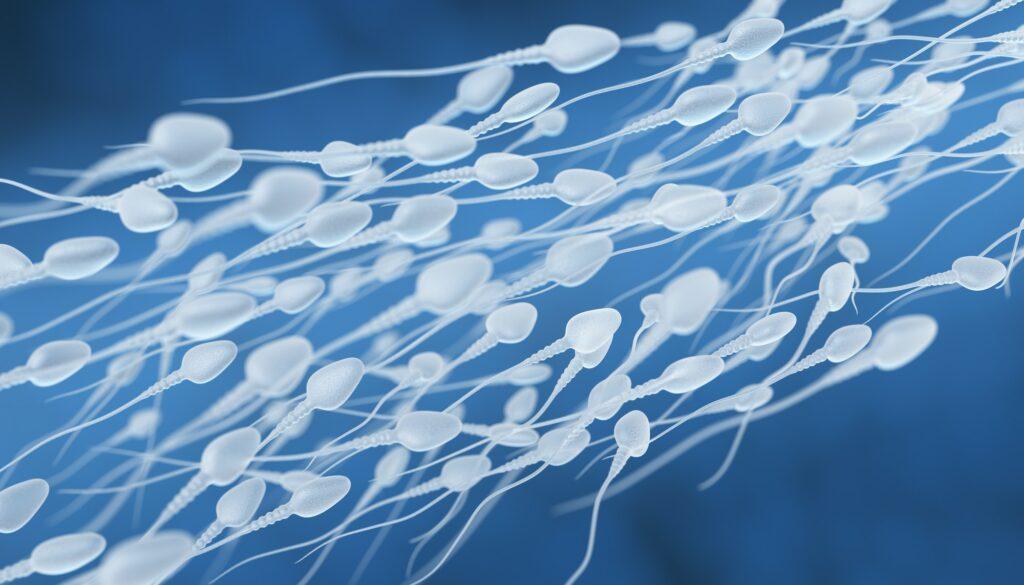 Human sperm flow